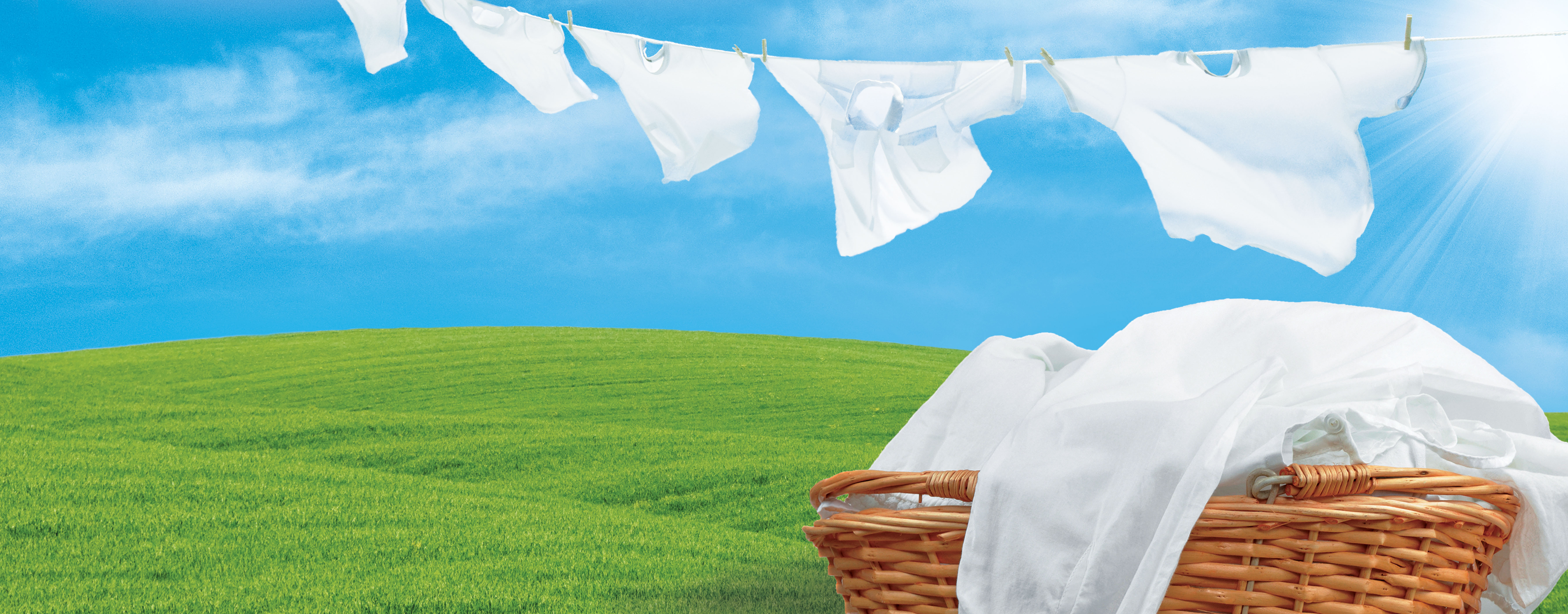 fresh laundry hanging on the line