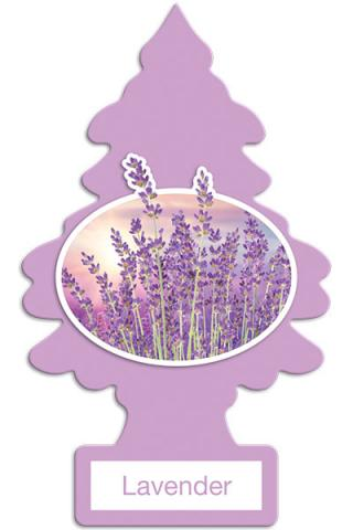 Lavender Little Tree